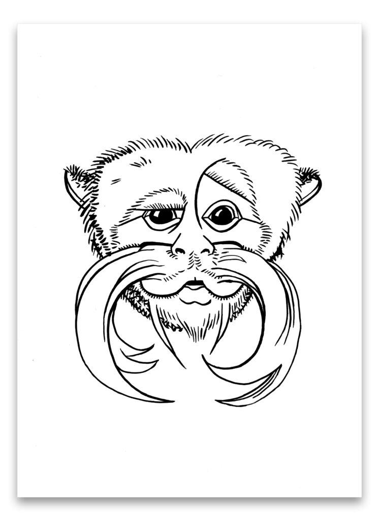 Pentekening van keizer-tamarin